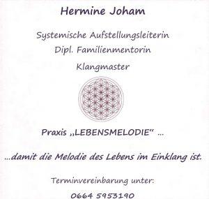 Hermine Joham, Systemische Aufstellung