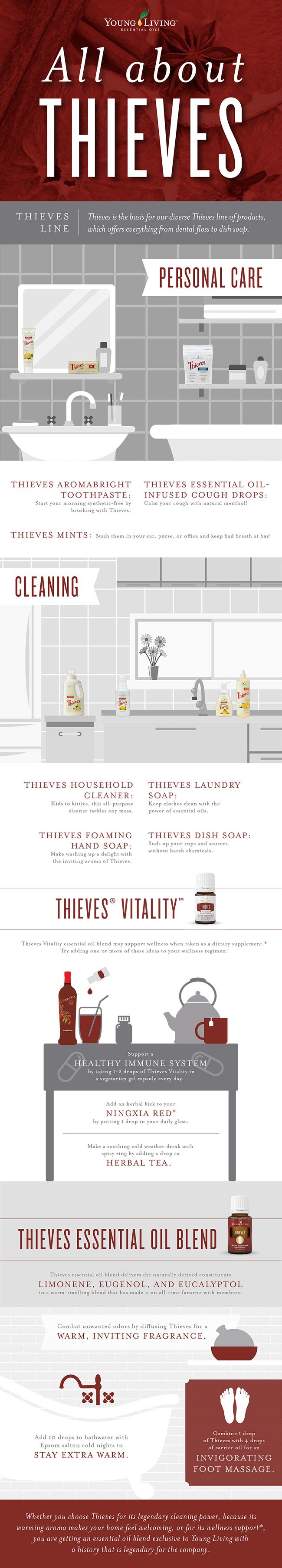 Blog Alles über Thieves Young Living AROMAREICH Infographik Englisch